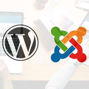 Wordpress & Joomla Berlin